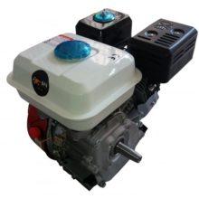 Motore Benzina Hp 6.5 Albero Cilindrico