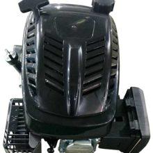 Motore Rasaerba Cc 196